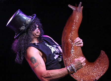 slash guns n roses guitar solo slug