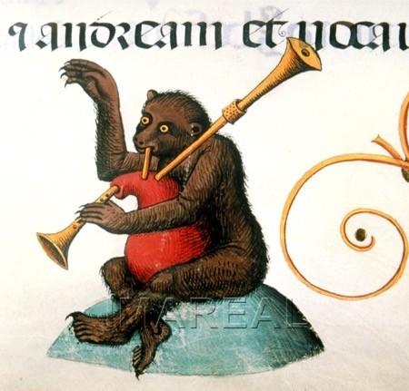bagpipe- bear