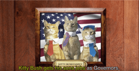 kitty bush family