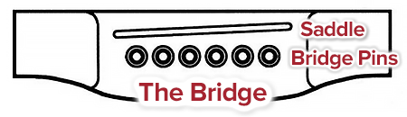 guitar bridge and saddle maintenance