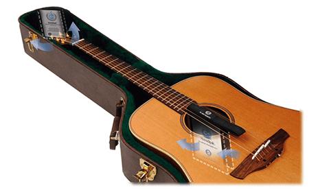 guitar case humidifier